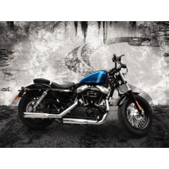 Escapamento Harley 883 XL Iron Chanfro Lateral