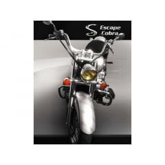 Protetor Motor Shadow 750 Mata Cachorro Moustache